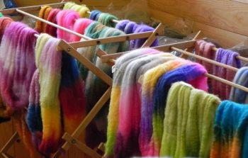 Beg Spin and Dyeing with Deb Jones at Sievers