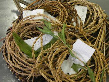 Natural Fiber Baskets Cordage