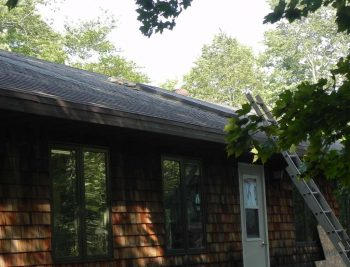 Sophie Studio Roof