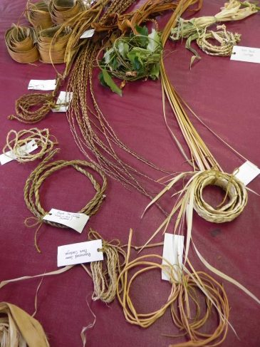 Natural Fibers Coiled