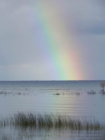 Lake-Michigan-rainbow2