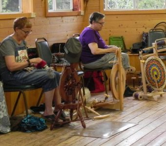 Class 21 Spinners Wool Breed Study