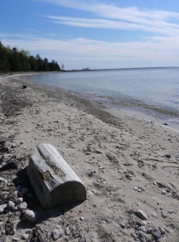 Land Trust Beach