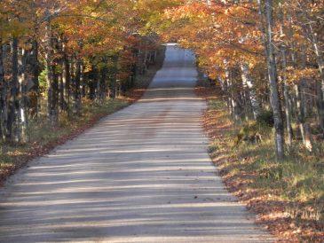 Fall East Side Road