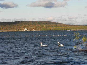 October Rock Island
