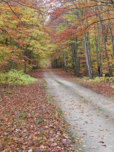 November Henning Road
