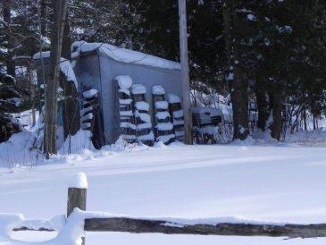 Snowy Ladders