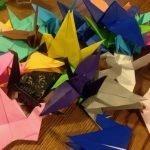 Nancy Akerly Origami